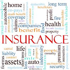 insurance word graphic